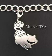 Alice In Wonderland Cheshire Cat Clip On Bracelet Charms Hearts Zipper Pulls