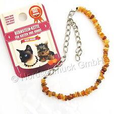 Bernsteinkette Hund Katze Bernstein roh Hundekette Halsband cognac 22 - 40 cm
