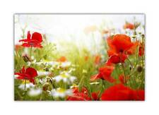 White Daisy And Red Flowers Poster Art Prints Wall Decoration Floral Pictures