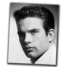 Warren Beatty FINE ART Celebrities Vintage Photo Glossy Big Size 8X10in I095