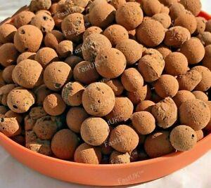 Clay Pebbles: Hydroponic LECA Canna Aqua Expanded Aggregate Pellet Stones 1,2,5L