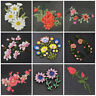 Embroidered Flower Patches Applique DIY Sew on/Iron On Handcraft for Clothes