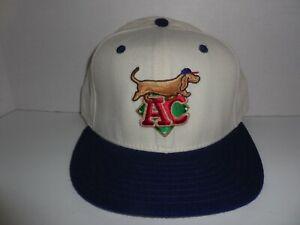 VTG. AC Diamond Dogs Minor League Baseball 5950 Alternate Hat 7 3/8  NWOT