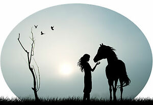Australian Cowgirl Horse Pony in Outback Farm Sunset - Car or Wall Decal Sticker