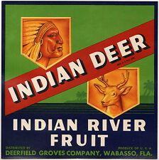 *Original* INDIAN DEER Deerfield Groves Wabasso Fla Citrus Label NOT A COPY!