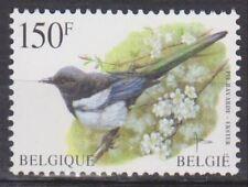 Belgique - Belgie - 2697 - Pie - Ekster - Buzin - 1997 - MNH