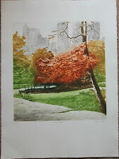 Gravure de Harvey KIDDER S/N etching New York Park Walk Central Park 1984