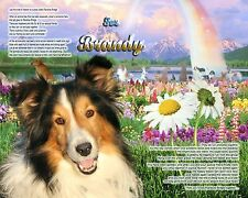 Dog Lovers Gift Idea-Collie Rainbow Bridge Memorial Personalized w/Pet's Name