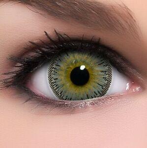 "BigEyes Circle Lenses Grau ""Dolly Grey"" Kontaktlinsen + GRATIS Behälter"