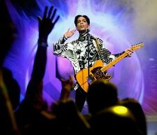 Prince Rogers Nelson photograph 8 (Paisley Park) - glossy A4 print