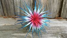 3 Tillandsia Ionantha ~Usa~ Colorized Fairy Garden Terriaum Air Plants