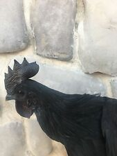 1 Pure Ayam Cemani Fertile Hatching egg eggs rare  chicken indonesion