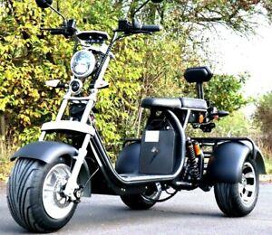 E-Scooter Coco Trike Bike Dreirad 60V 2000 Watt mit Straßenzulassung Roller Fun