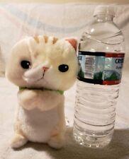 New Toreba Munchkin Orange Cat Plush From Japan