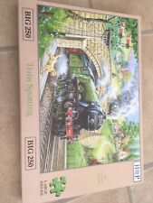 Train Spotting HOP BIG 250 piece jigsaw puzzle House of Puzzles