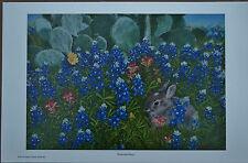 Bluebonnet Print Texas Landscape Dealer Offset Lithograph Medium 1990-1999