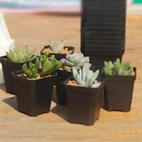 3 x Mini Square Plastic Plant Flower Pot Black Home Office Decor Planter HOT