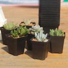 3 x Mini Square Plastic Plant Flower Pot Black Home Office Decor Planter Kits Ne