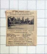 1927 Dorset Coast, 300 Feet Up, 7 Beds, Two And Half Acre Gardens, 4000 Guineas