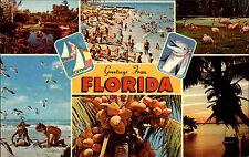 Mehrbild-AK 1975 Florida USA Amerika Schiffspost Stempel Maiden Voyage MS NAGARA