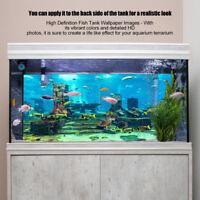 PVC Aquarium Background Coral Poster Fish Tank Decorations Landscape Sticker