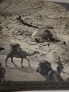 Vintage Stereoview Photograph Camel Caravan Jericho Jerusalem Apostles Spring