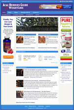 ACAI BERRIES - Professionally Designed Affiliate Website - Free Installation