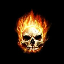 Flaming Skulls Hologram Light Kit, Motorcycle