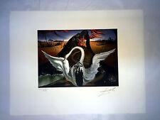 Salvador Dali Litografia 50 x 65 Bfk Rives Timbro a secco Firmata a Matita D141