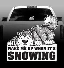 Wake Me When It's Snowing Alaskan Malamute - Vinyl Sticker Decal High Quality