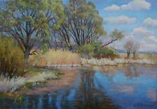 Original Sunday Spring Landscape Oil Painting Impressionism ART