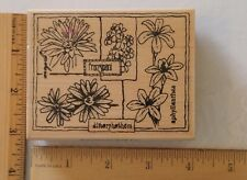 "Stampabilities Wood Rubber Stamp Botanical Floral Montage Jr1031 ©2002 4x3¼"" New"
