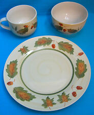 Royal Norfolk Acorn Fall Autumn 3 Piece Setting, Plate Cup Bowl Pattern #RNF84