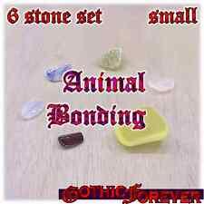 Animal Bonding Nature Healing Gemstone Kit Set of 6 SMALL 10mm Stones