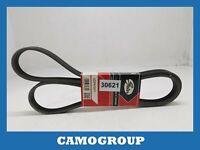 Belt Service V-Ribbed Belts BMW Serie 1 E81 Series 3 E92 X1 E84 X3 E83