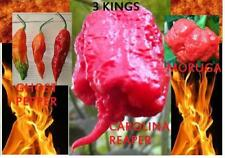 COMBO PACK Ghost Pepper Carolina Reaper Trinidad Moruga scorpion semi Hot Chili
