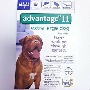 *RETAIL BOX *Advantage II Extra Large Dogs 6-PACK FLEA & LICE TREATMENT NEW