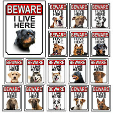 Dog Breeds Gate Signs Beware I Live Here Metal Tin Signs Garden Yard Fence Gift