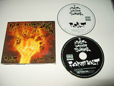 First Degree Burns First And Foremost 2 cd digipak 2008 cds are excellent