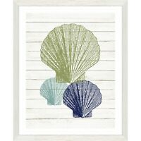 Seashells Wall Art Picture Sea Beach Home Decor Framed Nautical Painting Print
