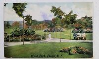 1909 Postcard Brand Park Elmira New York