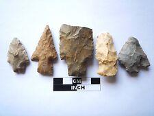 Native American des pointes x 5, véritable archaïque Artifacts, 1000BC-8000BC (969)
