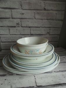 VINTAGE PYREX BLUE IRIS STEAK, DINNER SALAD PLATES CEREAL SOUP BOWLS BUNDLE