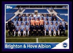 Merlin's Premier League 2018 - Team Photo Brighton & Hove Albion No. 41
