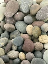 Mixed Mexican Beach Pebbles-decorative landscape stone ground cover