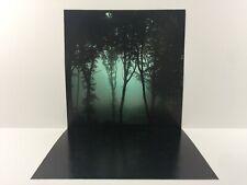 "custom spooky haunted forest backdrop ikea detolf display 12"" sideshow etc"