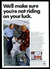 1968 English Setter color photo Gm United Delco car service vintage print ad