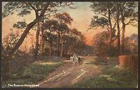 """London. Hampstead. The Avenue - 1906 """"Hampstead Heath"""" Series Printed Postcard"""