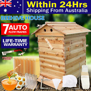 Wooden Beekeeping Beehive House +7PCS Upgraded Auto Honey Bee comb Hive Frame AU