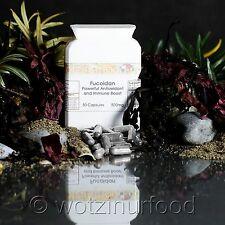 Fucoidan 85% Japanese Brown Seaweed Laminaria japonica and Dulse 500mg capsules